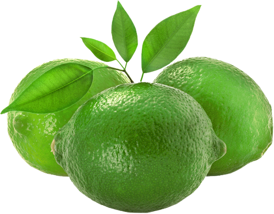 Fresh locally grown limes from Suncoast Limes in Gympie
